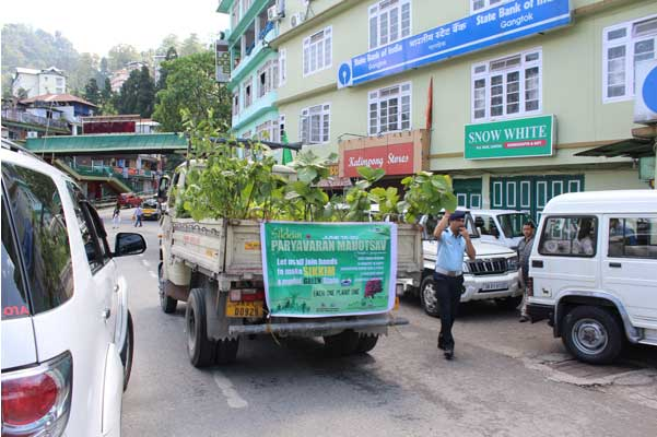 Seedling distribution vans mobilized to reach free seedlings to people