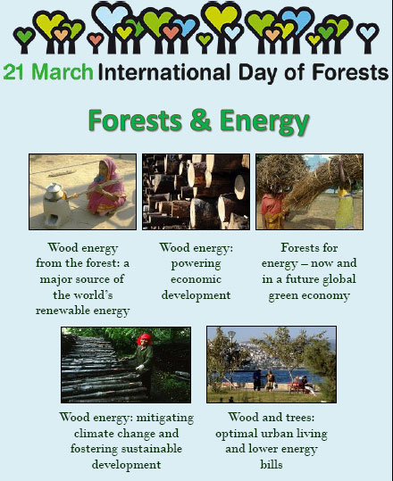 IInternational Day of Forests
